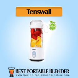 TENSWALL USB Rechargeable [Handheld Mixer] with fruit ingredients