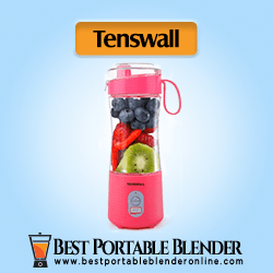 Tenswall Personal Size Smoothie Blender (Pink) stuffed with fruit ingredients