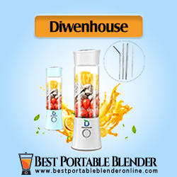 Diwenhouse Portable Blender for Travel with straws and cleaning brush – [Ultimate Juice Extractor]