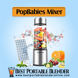 PopBabies Personal USB Rechargeable Blender - [Best for Shakes]